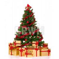 Vánoční provoz naší společnosti